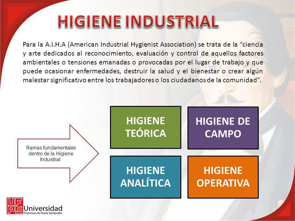 Para la A.I.H.A, un Higienista Industrial es una persona que, teniendo estudios medios o superiores, preferentemente licenciado en ingeniería, química, física, medicina o ciencias biológicas, por especiales estudios y entrenamiento, ha adquirido competencia en Higiene Industrial.