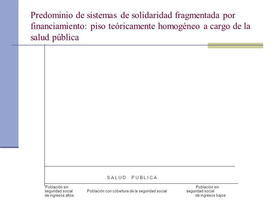 Predominio de sistemas de solidaridad fragmentada por financiamiento: piso teóricamente homogéneo a cargo de la salud pública S A L U D P U B L I C A