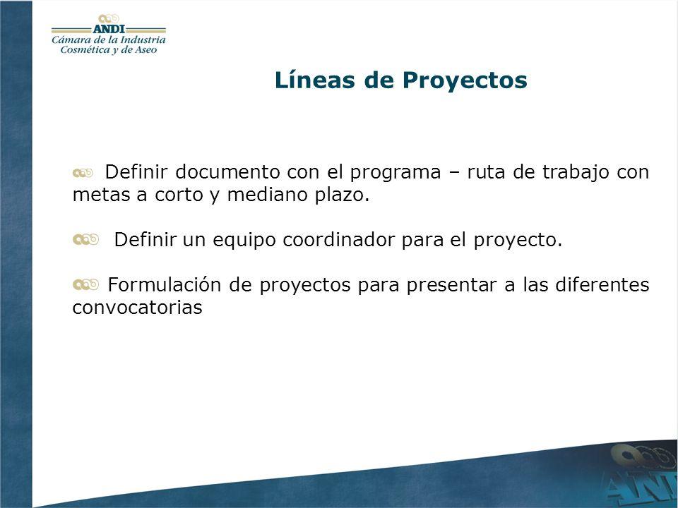 Líneas de Proyectos Definir documento con el programa – ruta de trabajo con metas a corto y mediano plazo. Definir un equipo coordinador para el proye