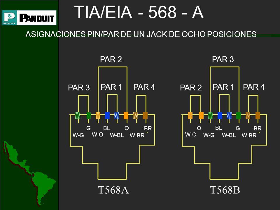 TIA/EIA - 568 - A ASIGNACIONES PIN/PAR DE UN JACK DE OCHO POSICIONES PAR 2 PAR 3 PAR 1 W-O O W-G BL W-BL G W-BR BR T568B PAR 4 PAR 3 PAR 2 PAR 1 W-O O W-G BL W-BL G W-BR BR T568A PAR 4