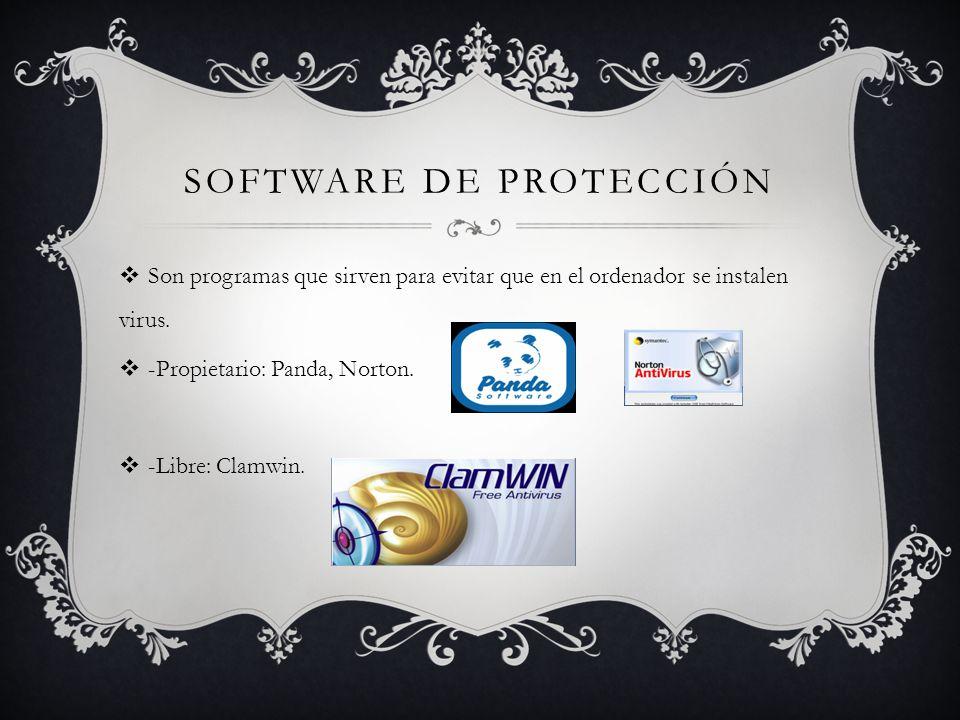 SOFTWARE DE PROTECCIÓN Son programas que sirven para evitar que en el ordenador se instalen virus.
