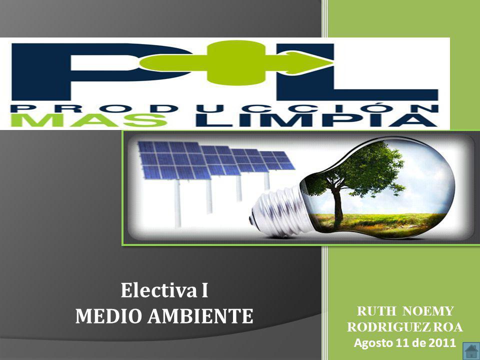 Electiva I MEDIO AMBIENTE RUTH NOEMY RODRIGUEZ ROA Agosto 11 de 2011