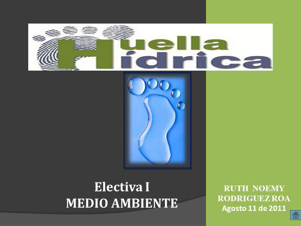 RUTH NOEMY RODRIGUEZ ROA Agosto 11 de 2011 Electiva I MEDIO AMBIENTE