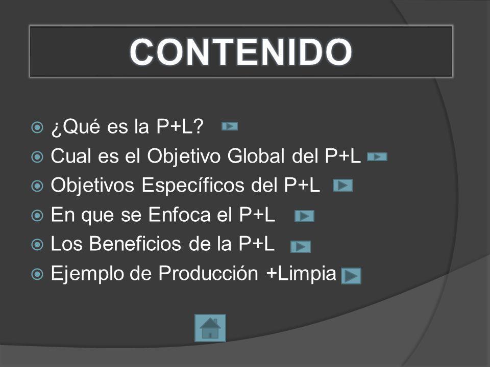 ¿Qué es la P+L.