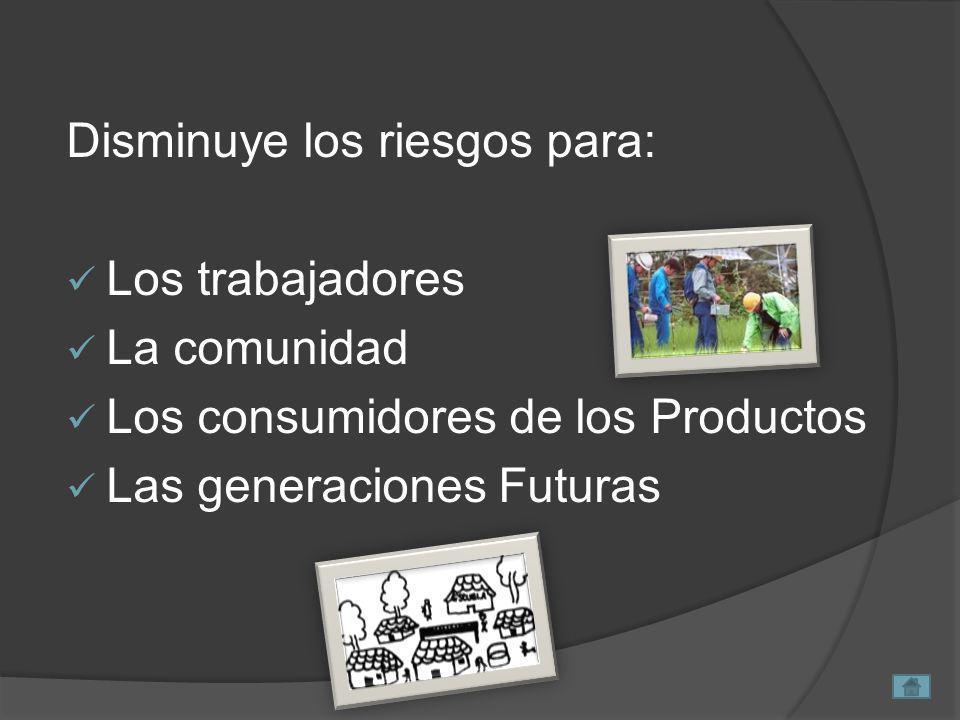 Disminuye los riesgos para: Los trabajadores La comunidad Los consumidores de los Productos Las generaciones Futuras