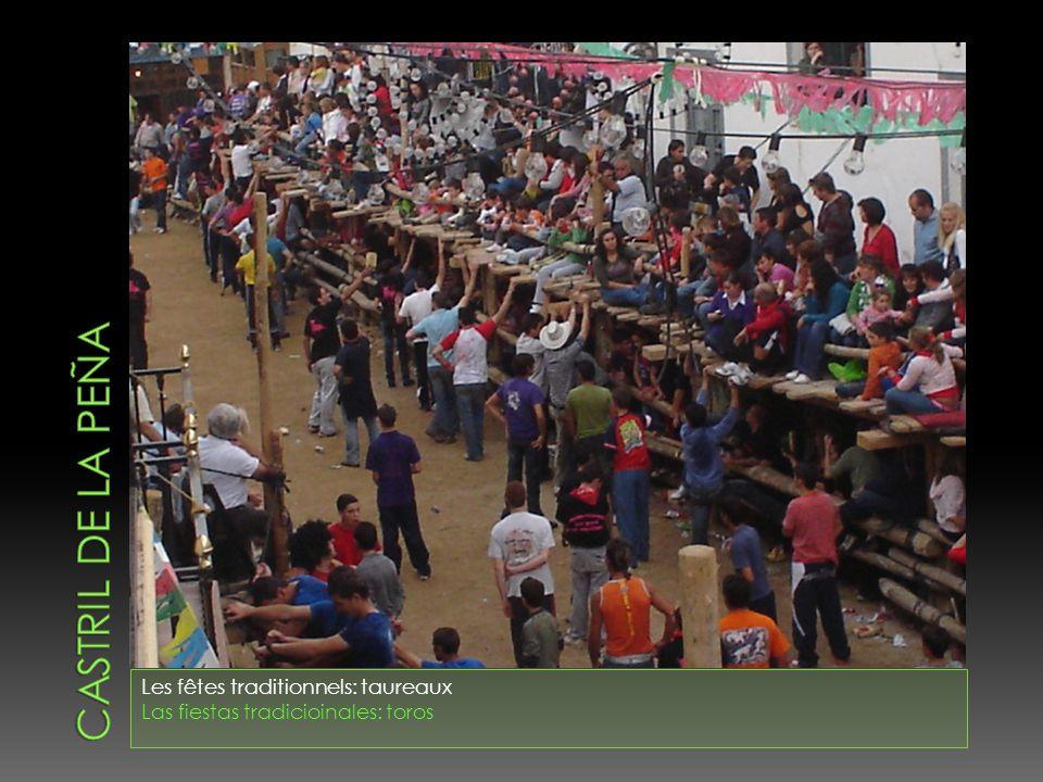 Les fêtes traditionnels: taureaux Las fiestas tradicioinales: toros