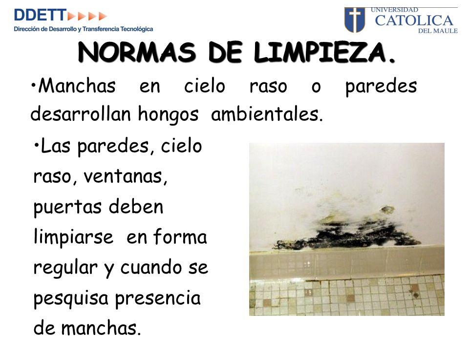 NORMAS DE LIMPIEZA.Manchas en cielo raso o paredes desarrollan hongos ambientales.