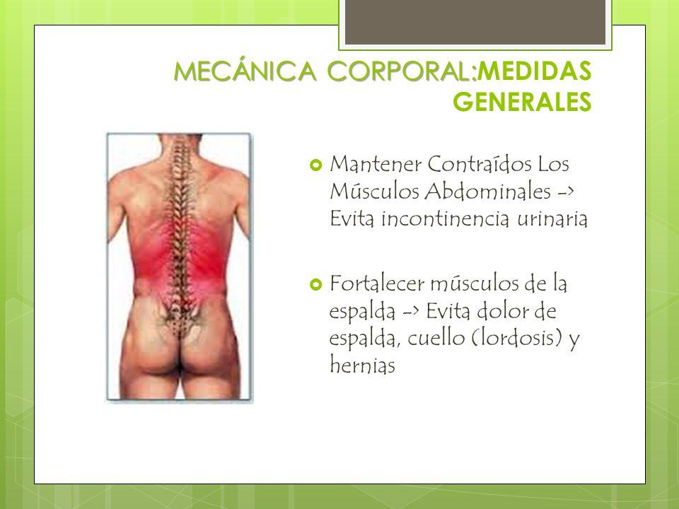 MECÁNICA CORPORAL: MECÁNICA CORPORAL: MEDIDAS GENERALES  Mantener Contraídos Los Músculos Abdominales -> Evita incontinencia urinaria  Fortalecer músculos de la espalda -> Evita dolor de espalda, cuello (lordosis) y hernias