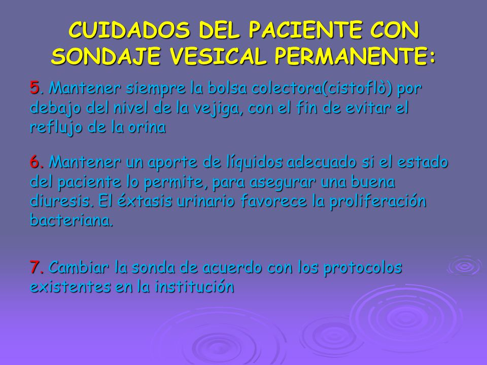 CUIDADOS DEL PACIENTE CON SONDAJE VESICAL PERMANENTE: 5.