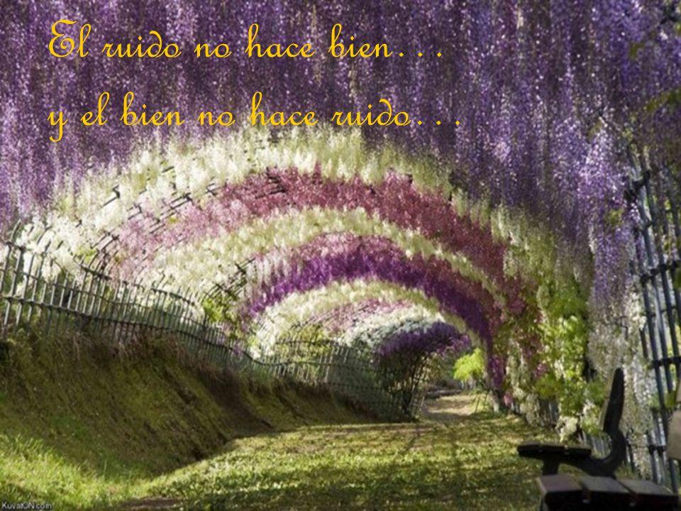 El ruido no hace bien… y el bien no hace ruido…