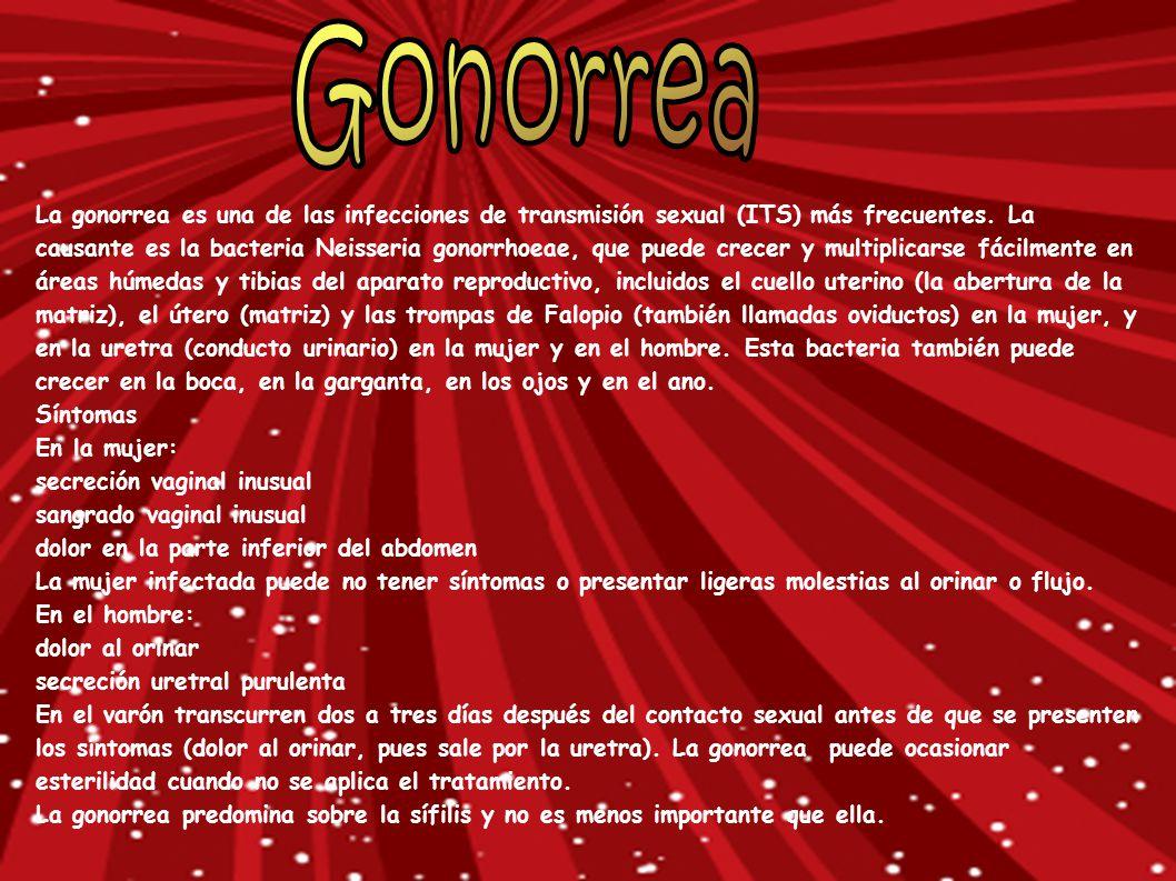 La gonorrea es una de las infecciones de transmisión sexual (ITS) más frecuentes. La causante es la bacteria Neisseria gonorrhoeae, que puede crecer y