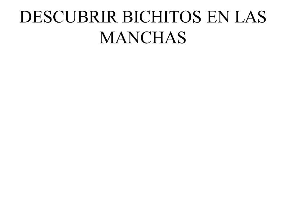 DESCUBRIR BICHITOS EN LAS MANCHAS
