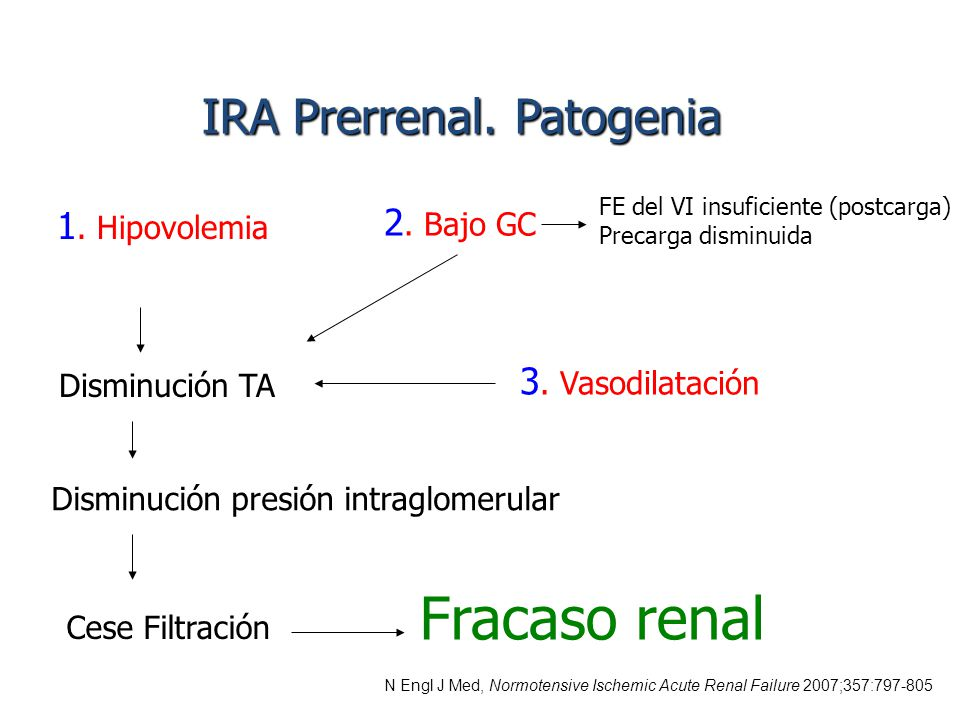 insuficiencia renal producida aines: