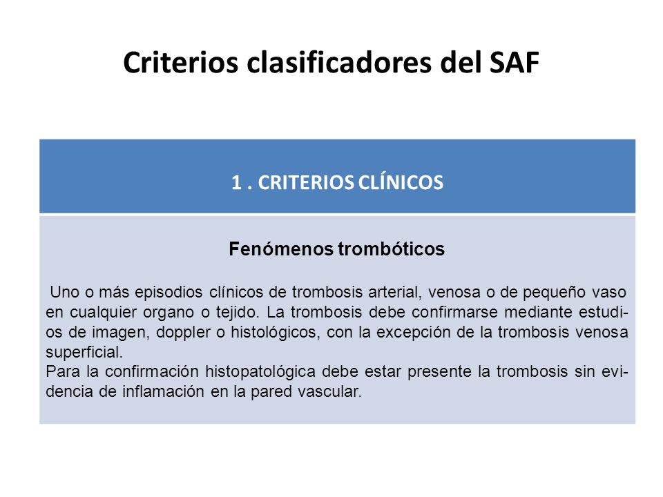 Criterios clasificadores del SAF 1.