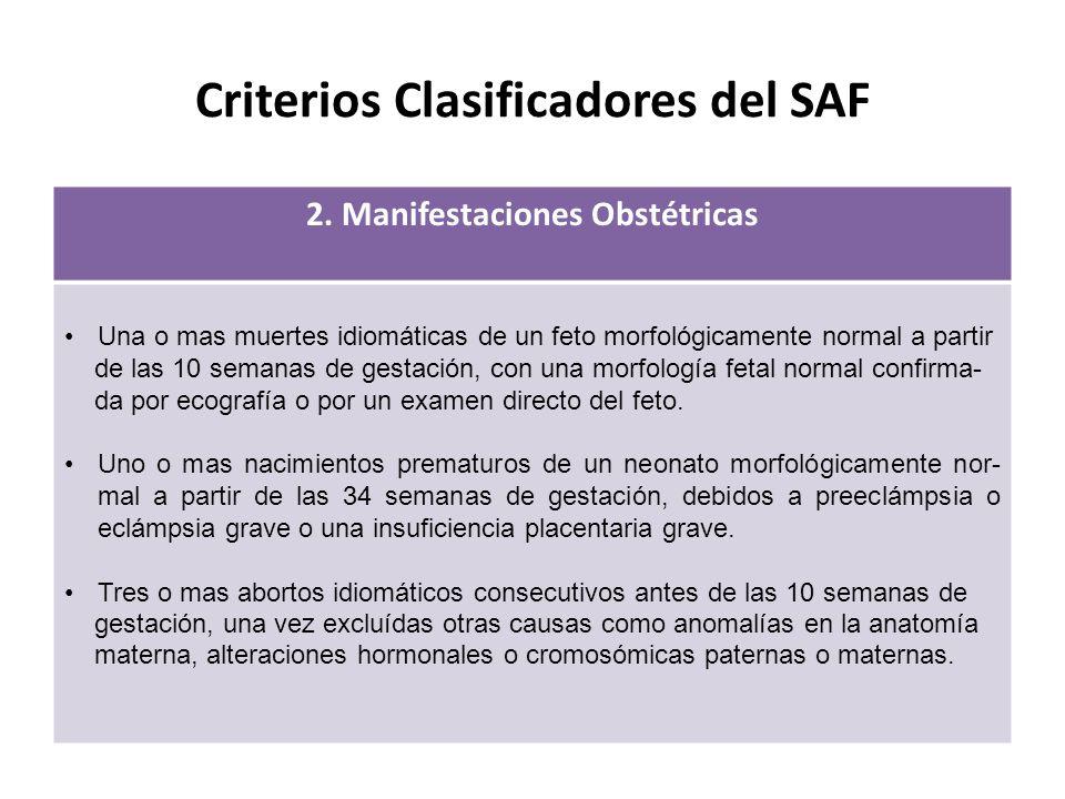 Criterios Clasificadores del SAF 2.