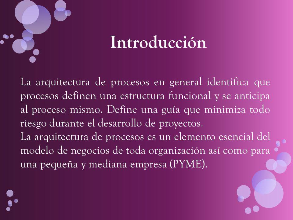 Conceptos claves - Arquitectura de procesos : permite identificar qué procesos definen una estructura funcional y se anticipa al proceso mismo, definiendo una guía que minimiza todo riesgo.