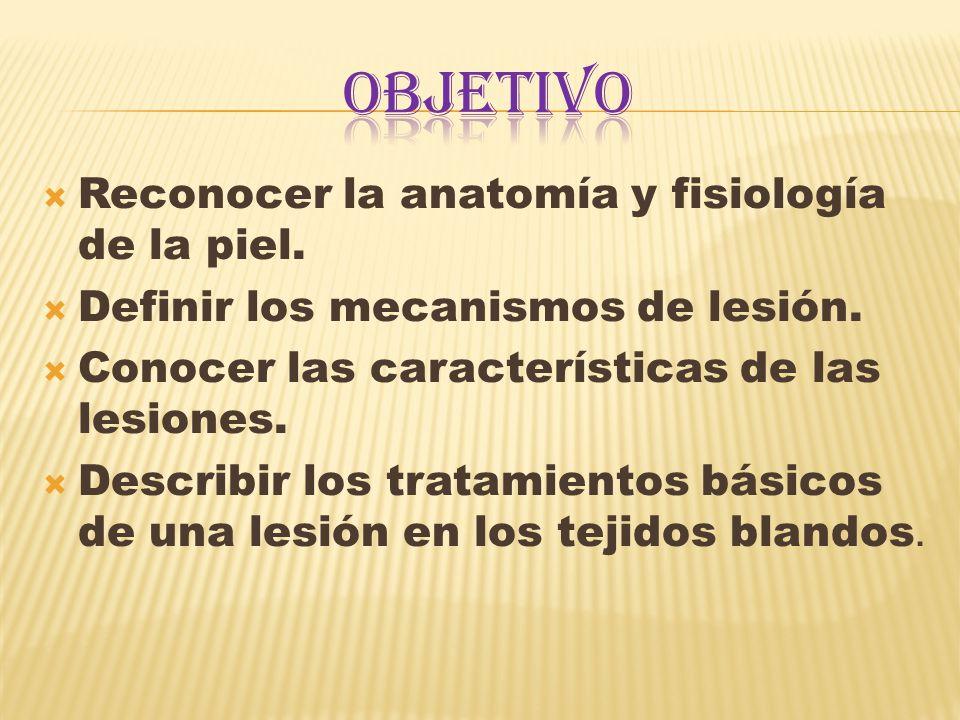  Reconocer la anatomía y fisiología de la piel. Definir los mecanismos de lesión.