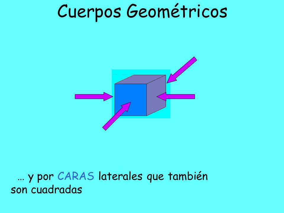 Cuerpos Geométricos El CUBO está limitado por CARAS basales planas que son cuadradas…