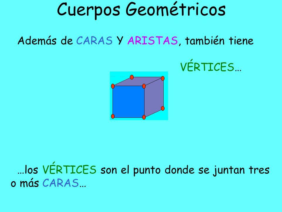 Cuerpos Geométricos Además de CARAS tiene ARISTAS… …las ARISTAS son las líneas que se forman al juntar dos CARAS… … también se dividen en basales y laterales.