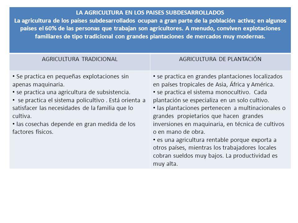 LA AGRICULTURA EN LOS PAISES SUBDESARROLLADOS La agricultura de los países subdesarrollados ocupan a gran parte de la población activa; en algunos países el 60% de las personas que trabajan son agricultores.