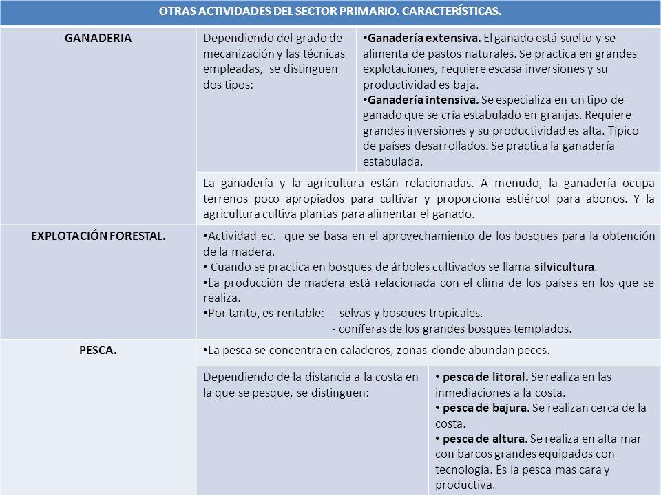 OTRAS ACTIVIDADES DEL SECTOR PRIMARIO.CARACTERÍSTICAS.