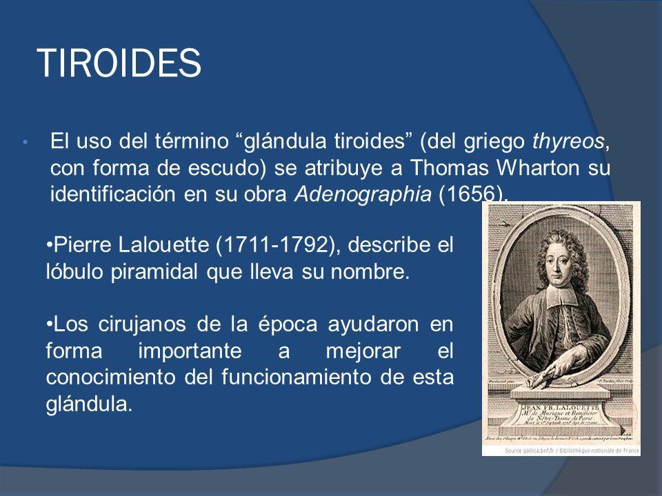 TIROIDES Embriología, anatomía, histología y fisiología. ANIBAL ...