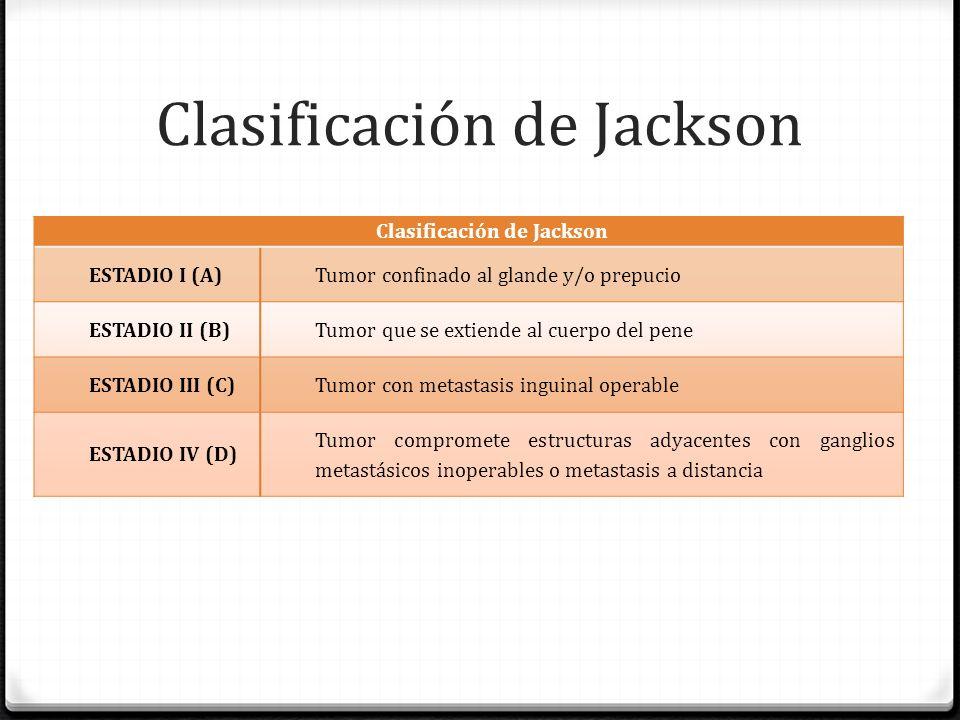 clasificacion del pene