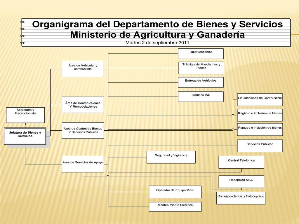 Departamento De Bienes Y Servicios Ppt Descargar # Registro Bienes Muebles Veh?culos
