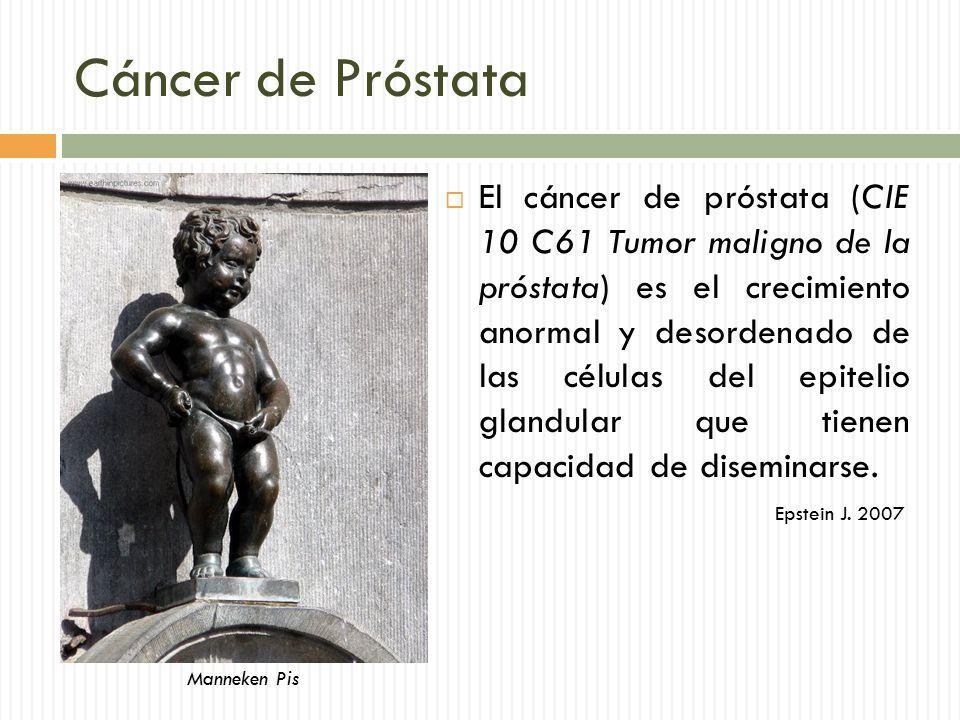 prostata c61