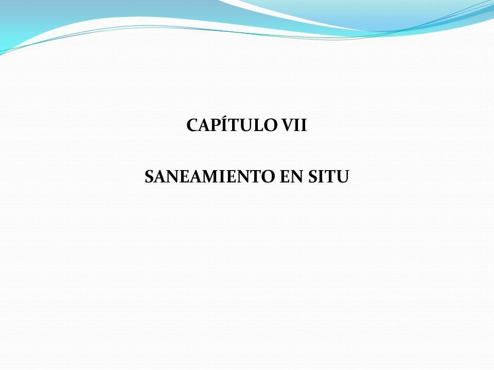 CAPÍTULO VII SANEAMIENTO EN SITU
