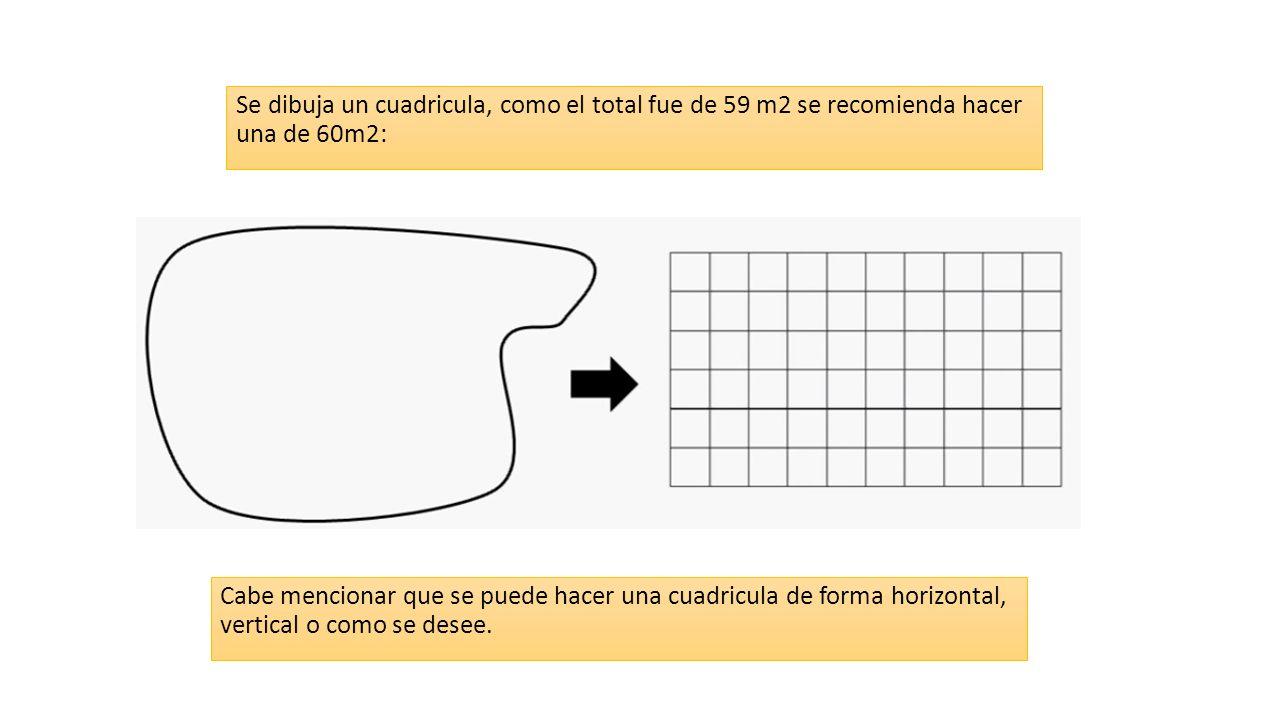 Se dibuja un cuadricula, como el total fue de 59 m2 se recomienda hacer una de 60m2: Cabe mencionar que se puede hacer una cuadricula de forma horizontal, vertical o como se desee.