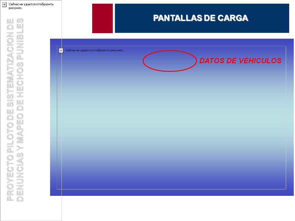 DATOS DE VEHICULOS PROYECTO PILOTO DE SISTEMATIZACION DE DENUNCIAS Y MAPEO DE HECHOS PUNIBLES PANTALLAS DE CARGA