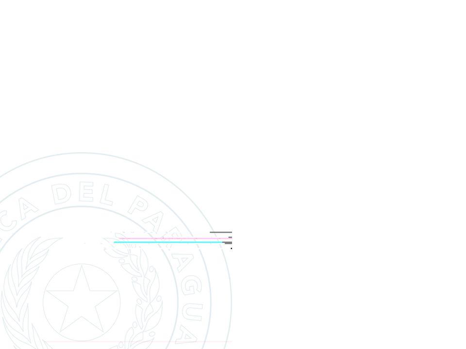 PROYECTO PILOTO DE SISTEMATIZACION DE DENUNCIAS Y MAPEO DE HECHOS PUNIBLES PROXIMAS ACCIONES ETAPAS DE IMPLEMENTACION Evaluación y ajustes - Proyecto Piloto (3 Crías) Restantes Comisarías de Asunción, totalizando 22 Crías.