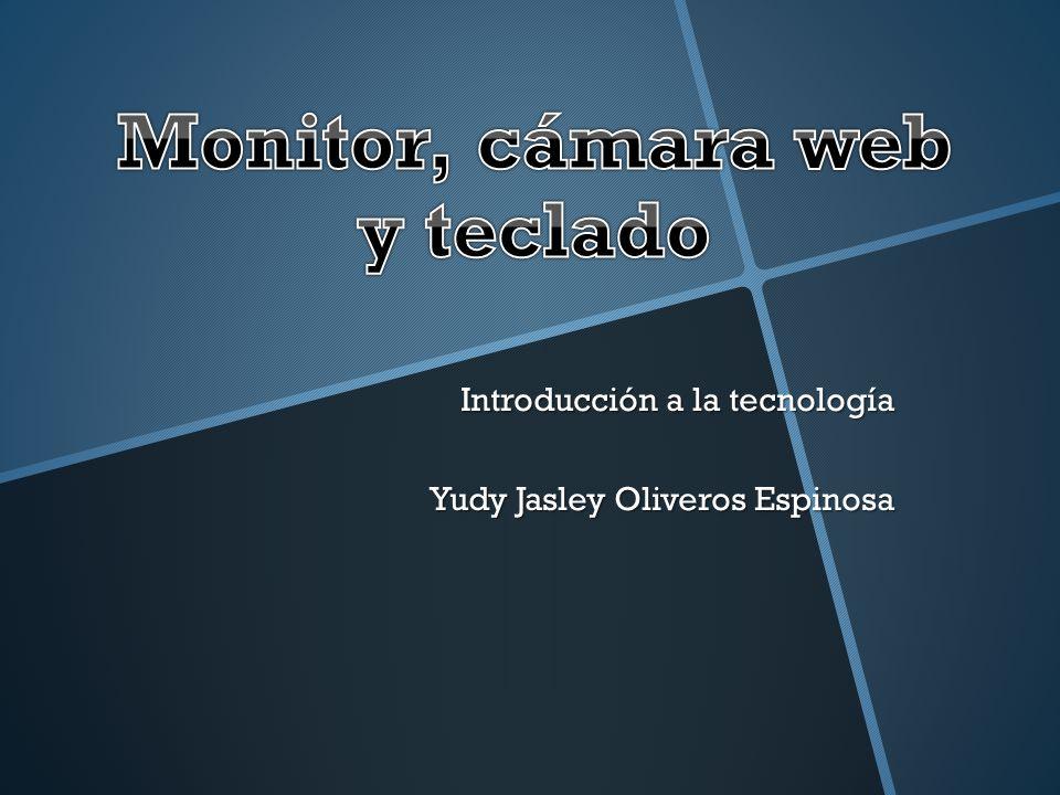 El monitor es un dispositivo de salida, que muestra datos o información al usuario.