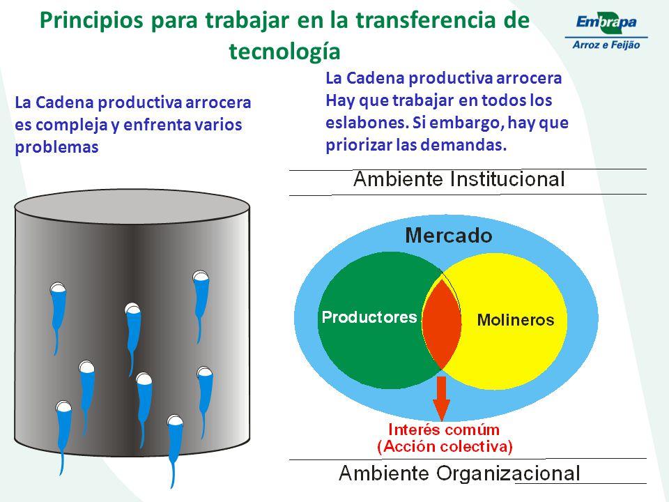 Principios para trabajar en la transferencia de tecnología La Cadena productiva arrocera es compleja y enfrenta varios problemas La Cadena productiva arrocera Hay que trabajar en todos los eslabones.