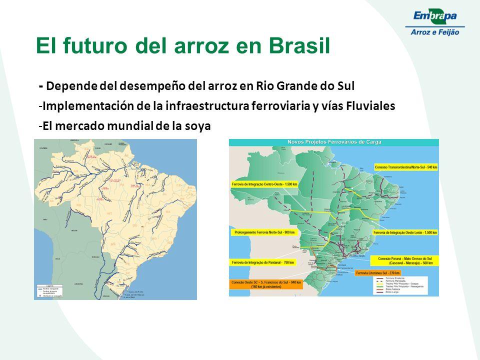 El futuro del arroz en Brasil - Depende del desempeño del arroz en Rio Grande do Sul -Implementación de la infraestructura ferroviaria y vías Fluviales -El mercado mundial de la soya