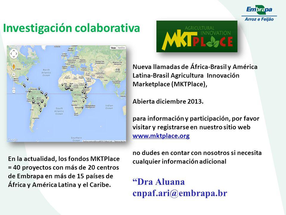Investigación colaborativa Nueva llamadas de África-Brasil y América Latina-Brasil Agricultura Innovación Marketplace (MKTPlace), Abierta diciembre 2013.
