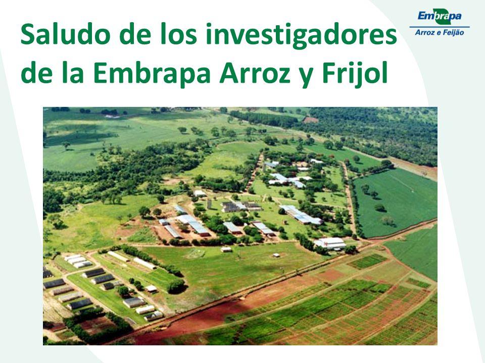 Saludo de los investigadores de la Embrapa Arroz y Frijol
