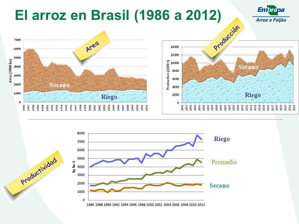 Riego Promedio Secano Irrigated Upland Area Productividad Producción Riego Secano El arroz en Brasil (1986 a 2012) Secano Riego