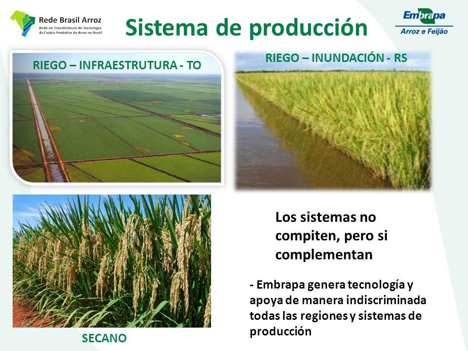 Sistema de producción Los sistemas no compiten, pero si complementan RIEGO – INFRAESTRUTURA - TO RIEGO – INUNDACIÓN - RS SECANO - Embrapa genera tecnología y apoya de manera indiscriminada todas las regiones y sistemas de producción