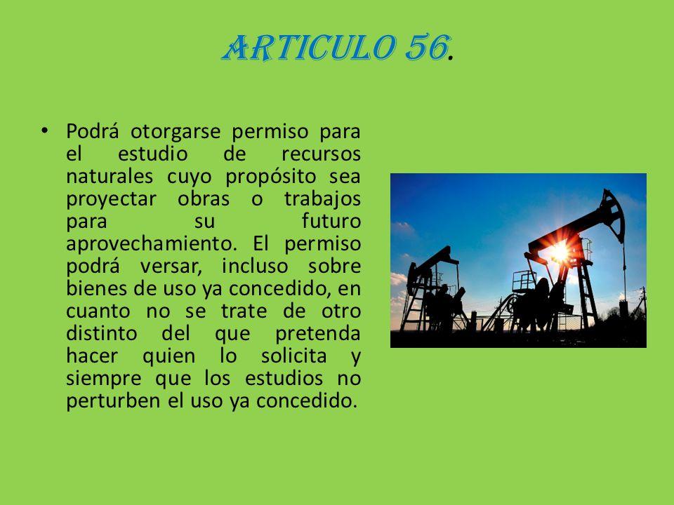ARTICULO 56. Podrá otorgarse permiso para el estudio de recursos naturales cuyo propósito sea proyectar obras o trabajos para su futuro aprovechamient