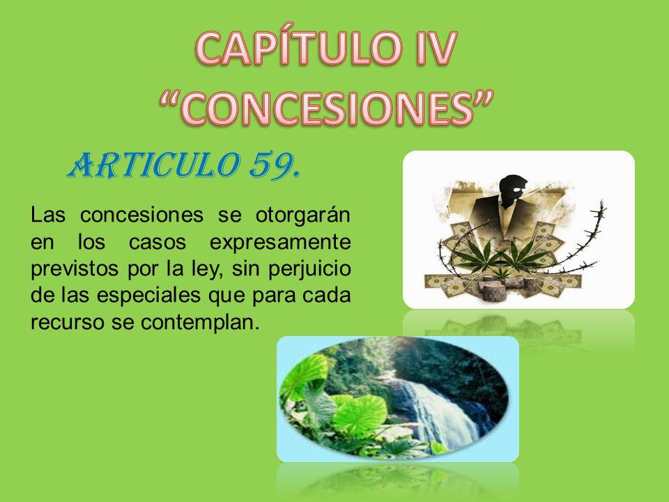 ARTICULO 59. Las concesiones se otorgarán en los casos expresamente previstos por la ley, sin perjuicio de las especiales que para cada recurso se con