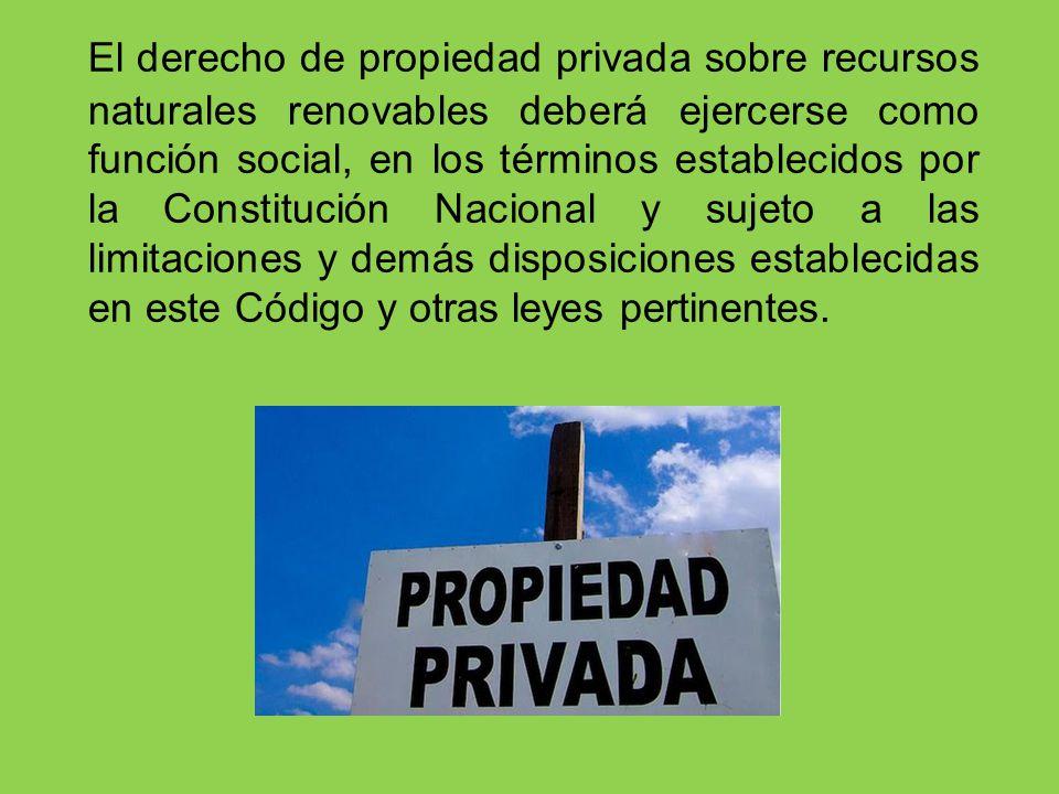 El derecho de propiedad privada sobre recursos naturales renovables deberá ejercerse como función social, en los términos establecidos por la Constitu
