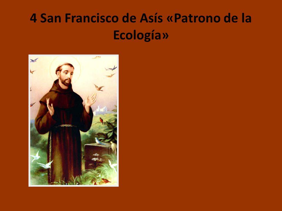 4 San Francisco de Asís «Patrono de la Ecología»