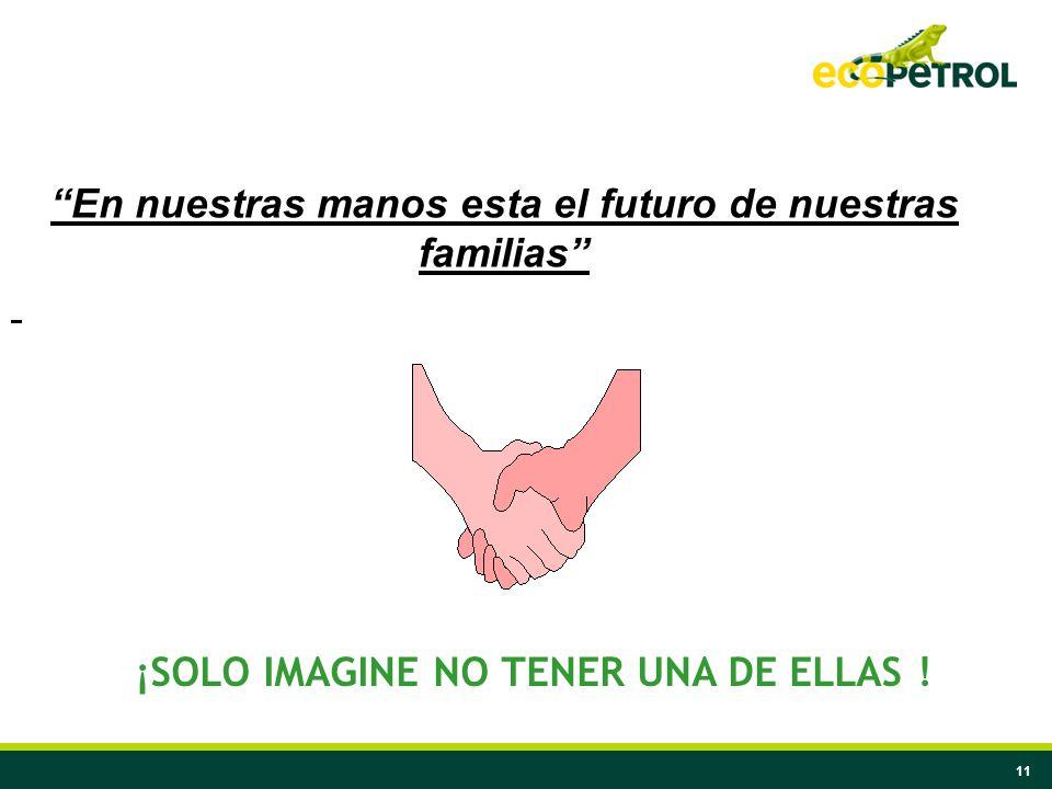 11 En nuestras manos esta el futuro de nuestras familias ¡SOLO IMAGINE NO TENER UNA DE ELLAS !