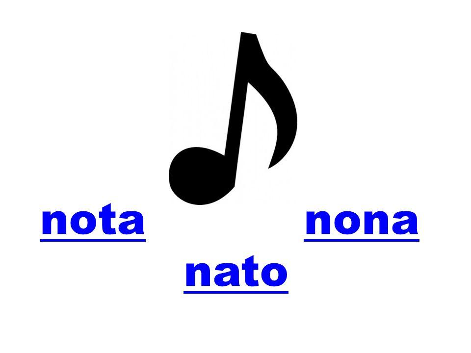 notanota nonanona nato