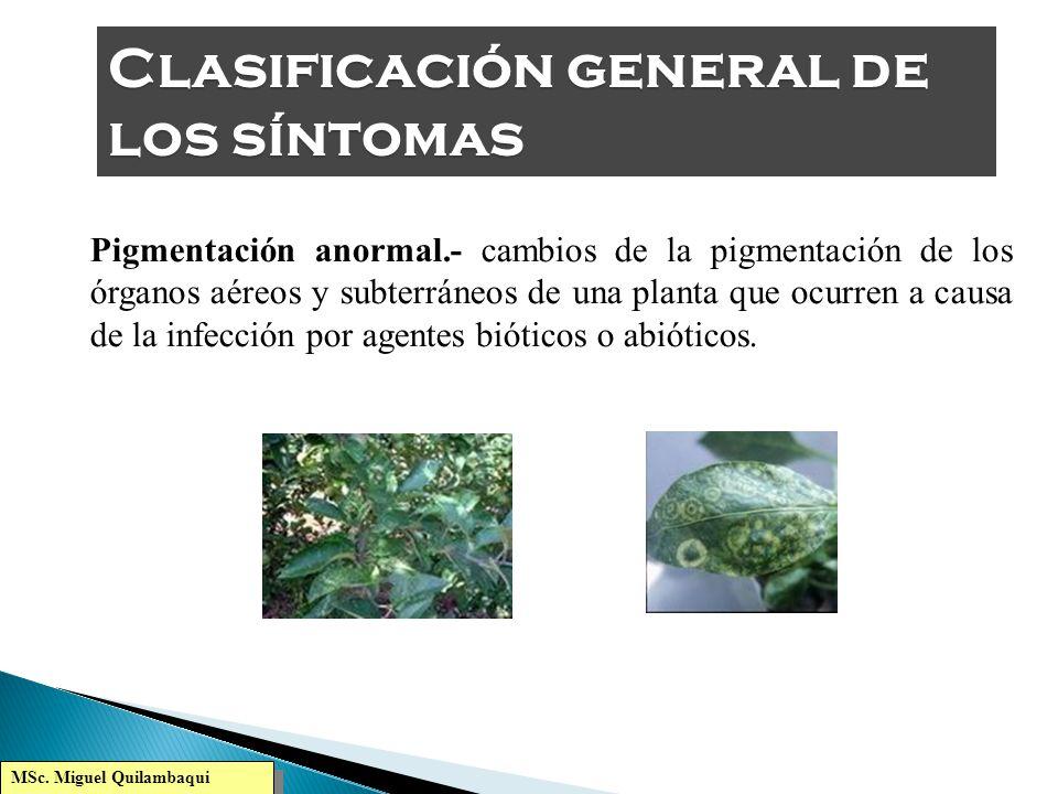 MSc. Miguel Quilambaqui Necrosis.- Es la muerte de los tejidos por acción de un agente causal biótico, o abiótico. Puede ser local o generalizada. Ej.