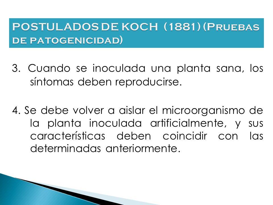 1. La existencia de una enfermedad implica que hay o ha habido un microorganismo asociado a la misma. 2. El microorganismo debe ser aislado y caracter