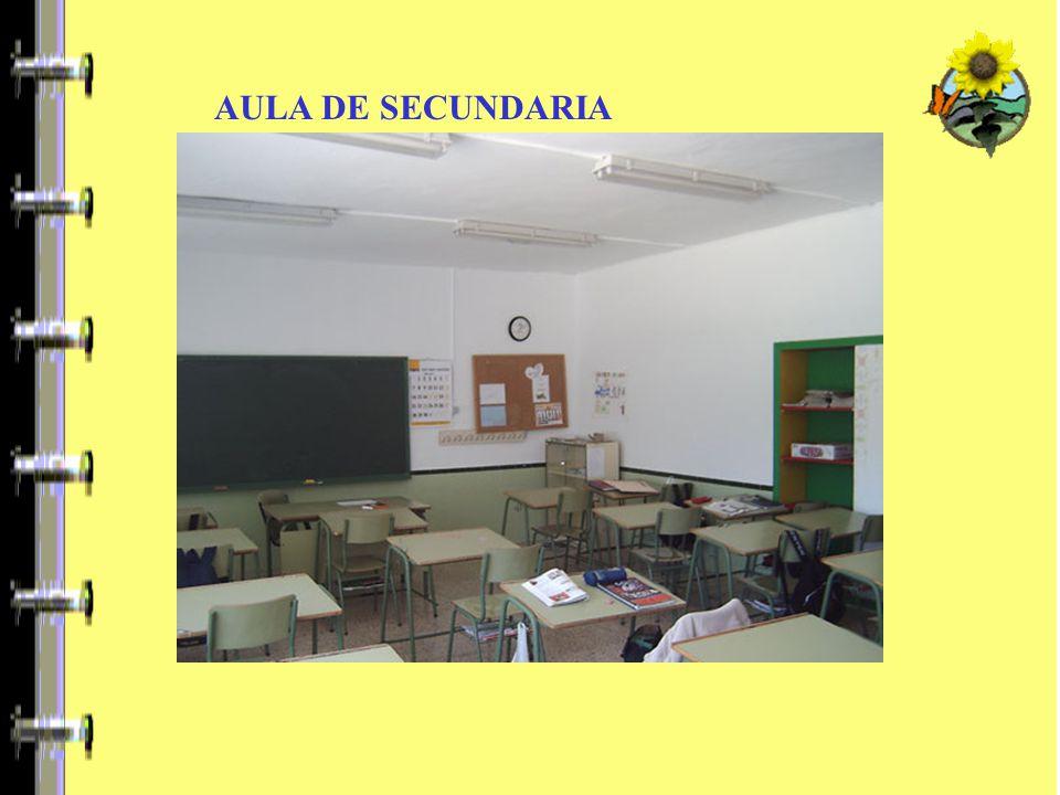 TERCER CICLO DE PRIMARIA