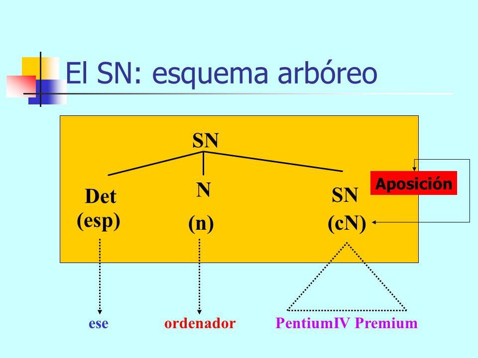 El SN: esquema arbóreo SN (n) (cN) Det N (esp) eseordenador SP con tantos programas